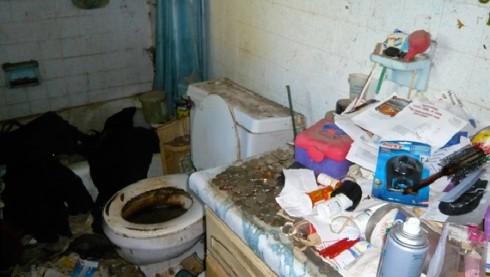The bathroom, in hoardier times