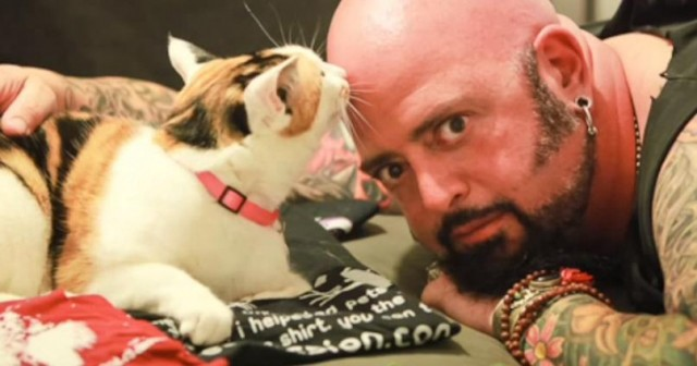 Jackson Galaxy How To Get  Cats To Get Along