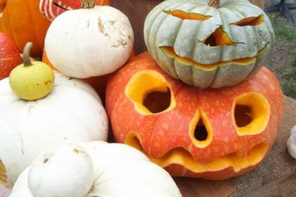 Heirloom Pumpkins at Whole Foods.