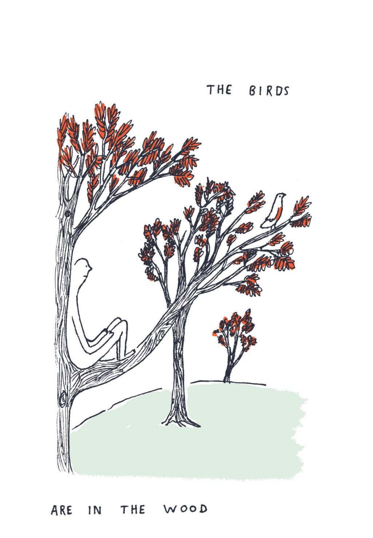 birdtop