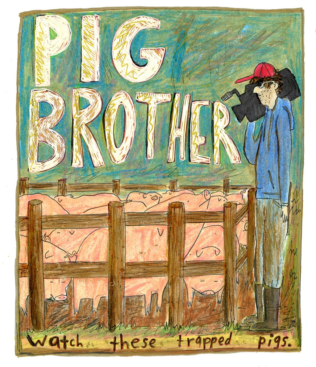 brother_pig