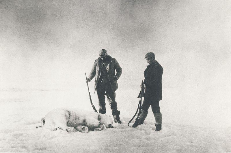 andree_polar_bear