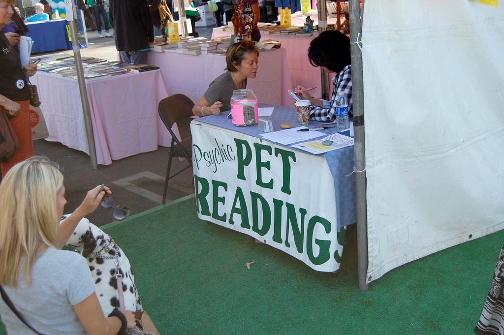 How Do Pet Psychics Talk To Animals? - The Awl