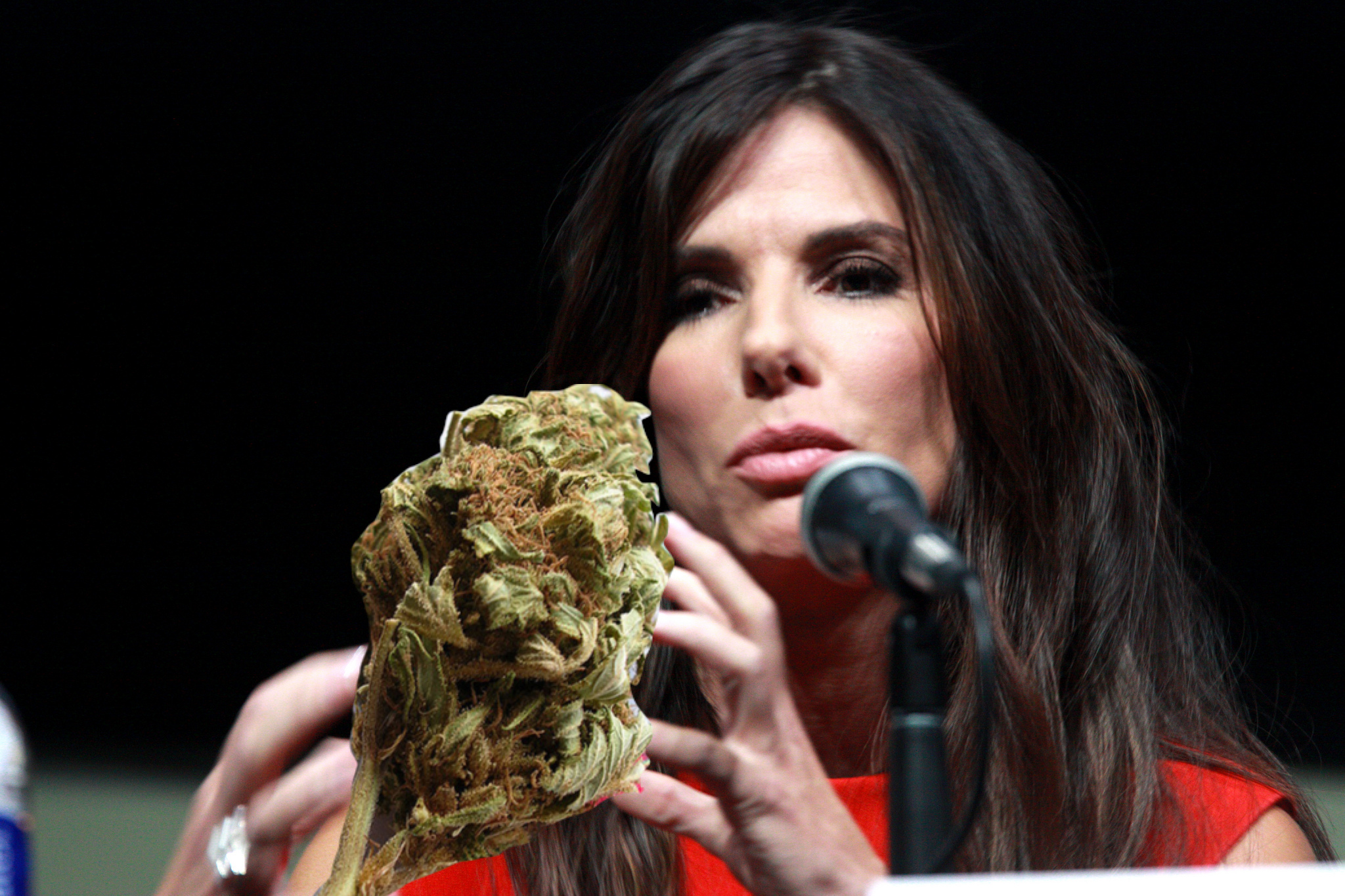 Fifteen Sandra Bullock Movies As Names For Weed Strains, Ranked